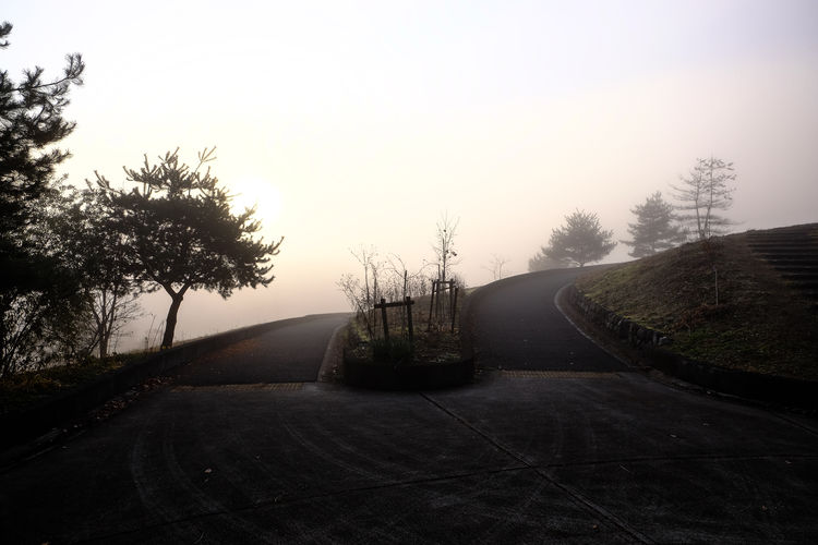 Be. Ready. Bright Calm Decisions Dream HalfwayThere Transitional Moments Unknown Beauty In Nature Curve Darkness And Light Day Foggy Future Landscape Nature No People Outdoors Road Scenics The Way Forward Tranquil Scene Tranquility Transportation Tree