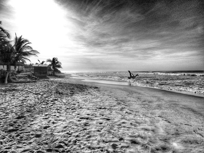 Acapulco Playa Beach Mexico
