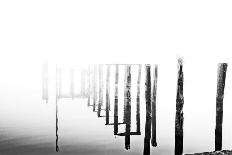 whats left of what was Beauty In Nature Blachandwhitephotography Black And White Cold Temperature Day Nature No People Outdoors Sky White Background White, Black, Lake Dreamy, Abstract