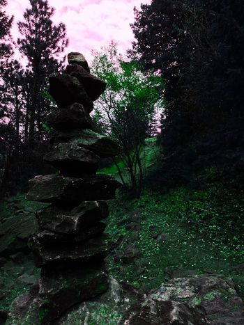 Edited shot of my creation! Denver,CO Lookout Mountain Close-up Outdoors Nature Tree Rocks Rockstacking