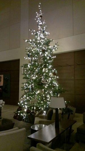 Christmas Tree at work Trees Christmas Christmas Tree