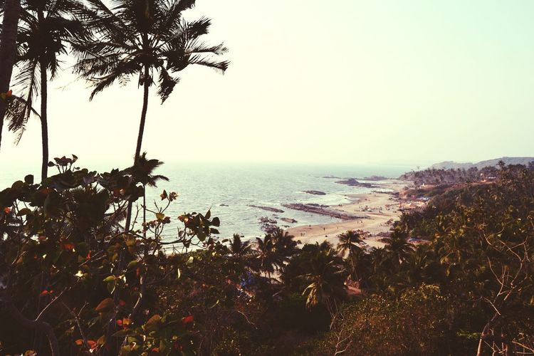 Goa . Anjuna beach