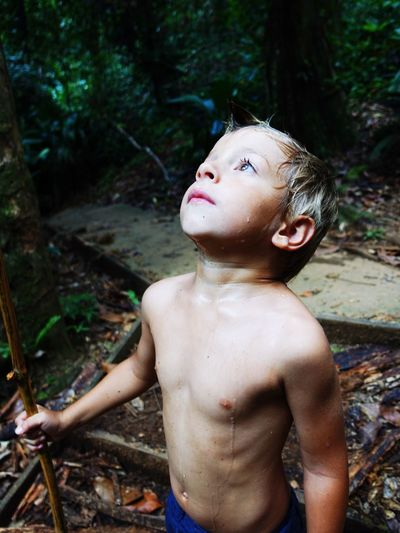 Shirtless Boy Looking Up In Forest