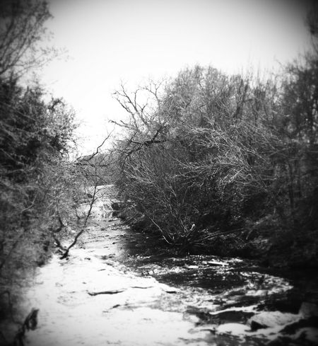 Vintage Creek Creek Creeks Naturesbeauty_creeks Old Vintage Black & White EyeEm Best Shots - Black + White Blackandwhite Photography Blackandwhitephotography Water