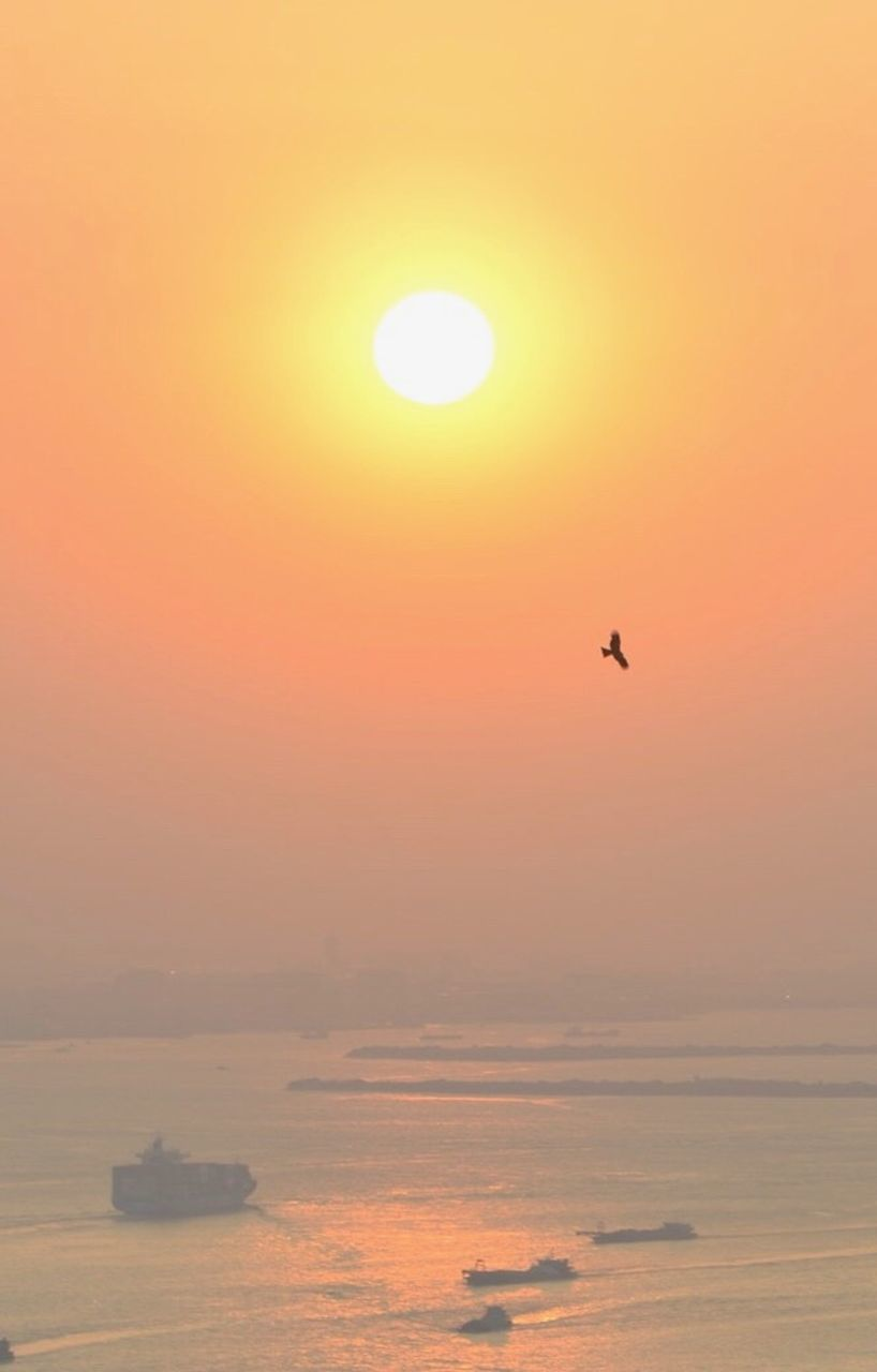 sunset, sea, sun, silhouette, nature, beauty in nature, flying, scenics, sky, outdoors, water, tranquil scene, no people, horizon over water, bird, tranquility, one animal, travel destinations, animal themes, nautical vessel, day