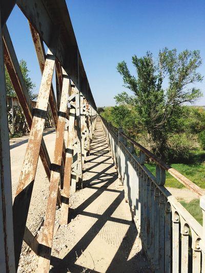 Proyectopuentes Puentes Bridge Bridge View Monegrosdesert