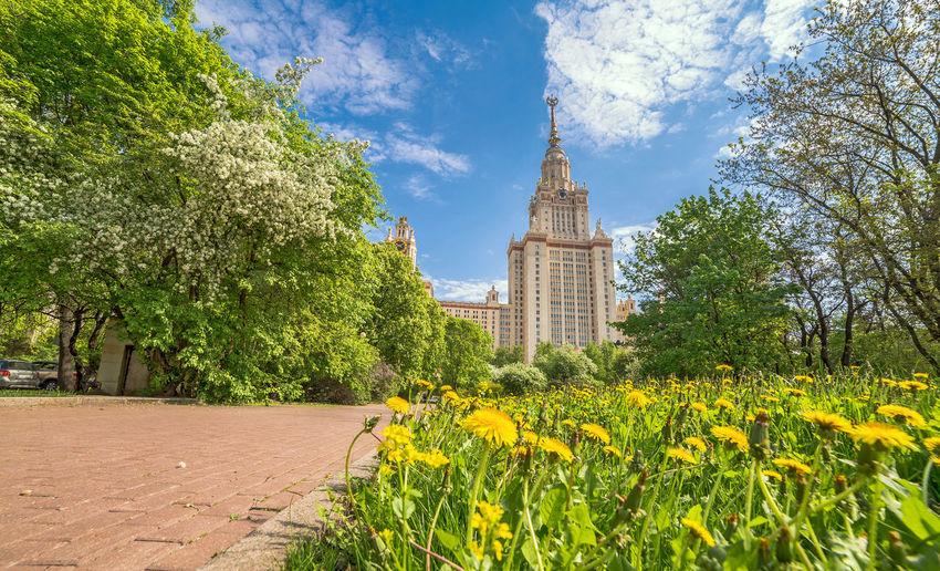 Sunny campus of