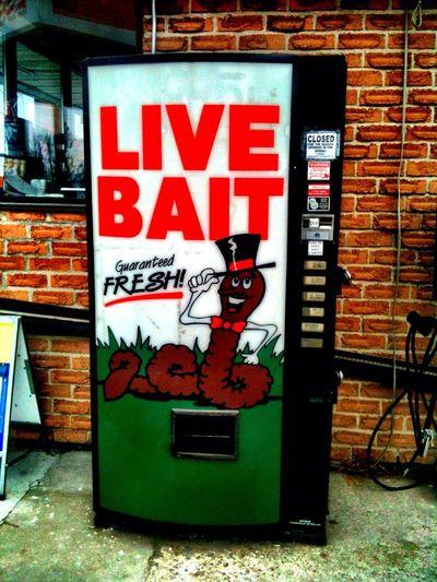 live bait dispenser Live Bait Dispenser