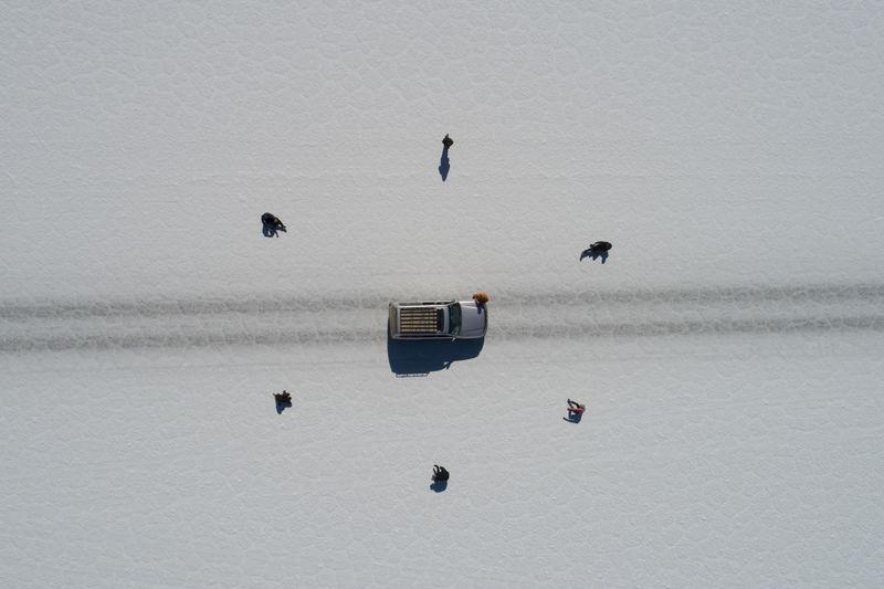 Birds flying over lake during winter