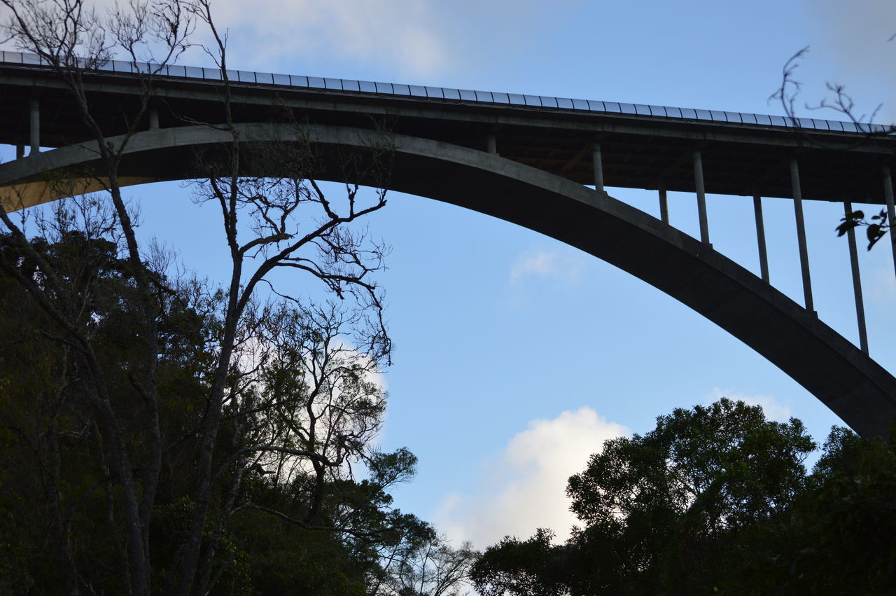 bridge - man made structure, connection, low angle view, engineering, transportation, sky, architecture, built structure, tree, day, cloud - sky, outdoors, bridge, no people, nature