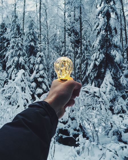 Cropped hand holding illuminated light bulb against snow covered trees