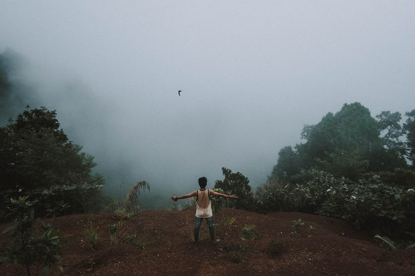 Lintau, 2018 Tree Plant Flying Real People Nature Sky Fog Land Vertebrate One Person Day Bird Leisure Activity Outdoors Field Men Lifestyles Mid-air A New Perspective On Life Holiday Moments