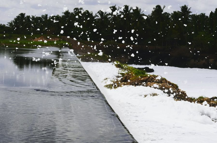 Chemicals Contaminated Nature Contaminated Water Urbanization And Development