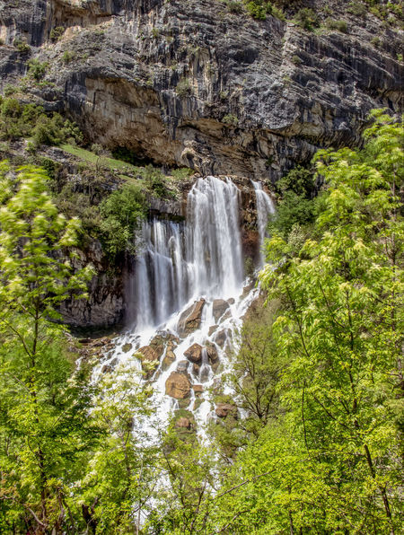 Albania Beauty In Nature Day Environment Falling Water Flowing Flowing Water Forest Land Long Exposure Motion Nature Outdoors Power In Nature Rainforest Rock Rock - Object Rock Formation Scenics - Nature Solid Tree Water Waterfall