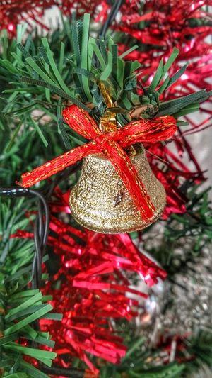 Christmas Bell Christmas Bells Christmas Tree Christmastime Christmas Decorations Christmas Time Christmastree Christmas Spirit Christmas Lights Merry Christmas Christmas2015 Tree Beautifully Organized
