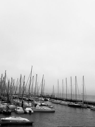 France Brest Blackandwhite Nautical Vessel Water Transportation Sky Sailboat Mode Of Transportation Pole Nautical Vessel Water Transportation Sky Sailboat Mode Of Transportation Pole Copy Space Waterfront No People Nature Clear Sky Beauty In Nature Scenics - Nature Moored Sea Day Mast Harbor Marina