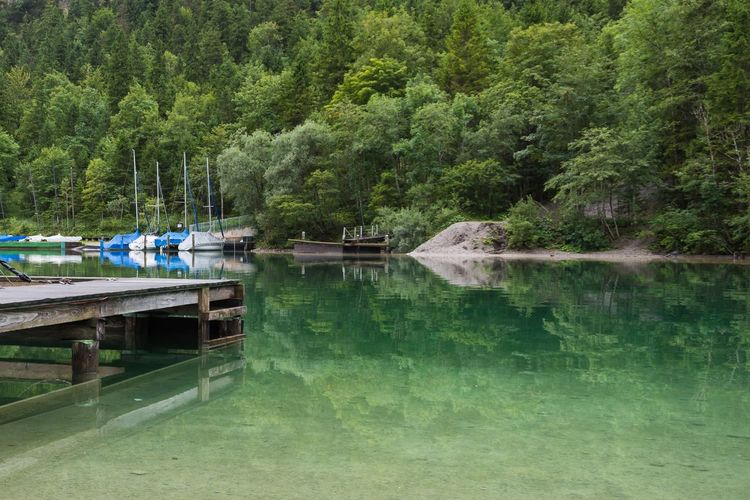 Nautical Vessel Lake Tree Tranquil Scene Scenics Outdoors Waterfront Day Sky Beauty In Nature Reflection Water Tranquility Green Color Reflection Vacations Pedal Boat Nature Tree Beauty In Nature