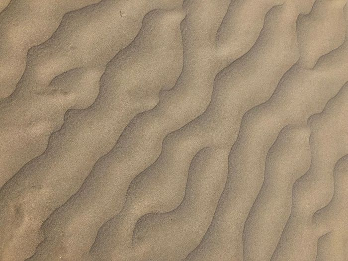 Curve Lines Copy Space Background Backgrounds Abstract Design Symmetry Desert Sand Dune Full Frame Backgrounds Textured  Pattern No People Sand Textile High Angle View Crumpled Outdoors Directly Above Wave Pattern Close-up Brown Nature Beach Luxury Rough Day Land