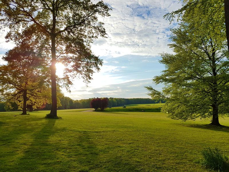 The beautiful park La Hulpe - Beauty In Nature Day Field Grass Green Color Growth La Hulpe Landscape Nature Outdoors Park Scenics Sky Spring Sun Sunlight Tranquil Scene Tranquility Tree