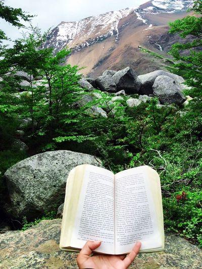 Mountains Outdoors Nature Book Literature Haruki Murakami Torres Del Paine Hike Trees Woman