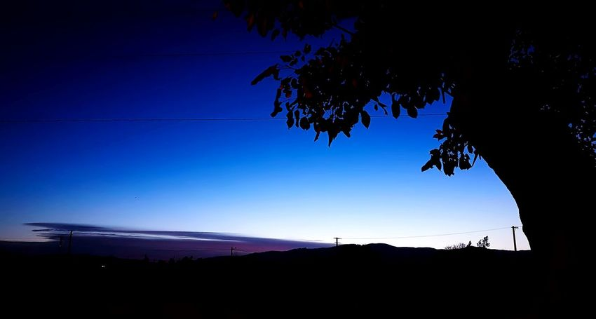 Silhouette Blue Landscape Nature Outdoors No People Mountain Sky Night Beauty In Nature Tree Politics And Government Astronomy