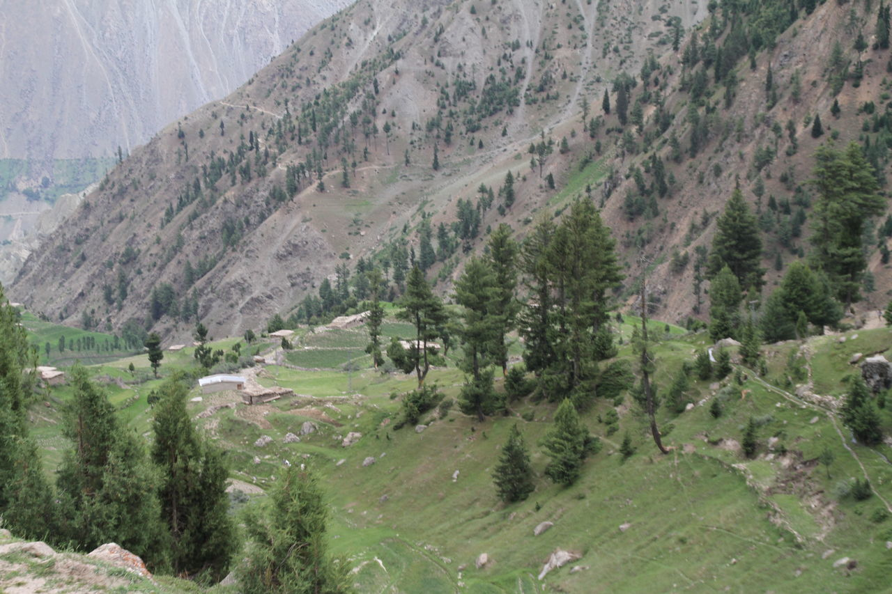 landscape, mountain, nature, day, no people, mountain range, scenics, outdoors, tree, beauty in nature