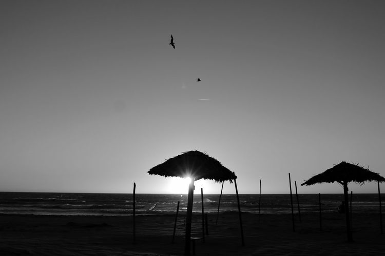 Sunset Beach Beachphotography EyeEm Black & White Black And White Seagulls Sunsetlover Blackandwhite Bnw Sunset Silhouettes Sunset_collection Waves, Ocean, Nature Light And Shadow Blackandwhite Photography BnwEye4photography  EyeEm Best Shots EyeEmBestPics Summer Summer Views EyeEm Nature Lover Light And Shadow EyeEm Gallery Taking Photos Portugal