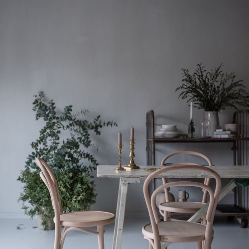 Table Chair Indoors  Home Interior Potted Plant Close-up Brass Nordic Interior Interior Design Line Paint