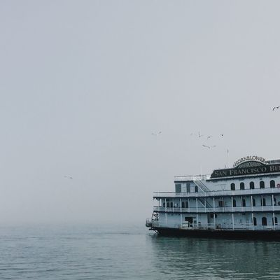 Steam ship docked in San Francisco on a foggy day Animal Themes Architecture Beauty In Nature Bird Blue Day Docked Fog IPhone IPhoneography Large Group Of Animals Nature No People Outdoors Pier San Francisco Sea Ship Sky Square Steamship Travel USA Water Waterfront