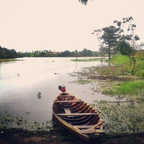 Relaxing Vegging Out Nature Amazonas ♥