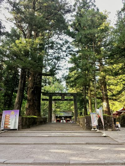 after the golden week, everyone just... disappeared 🙎 || Temple Hopping Nature Mountains Deserted Travels Travel Travelling Traveling Explore Nippon