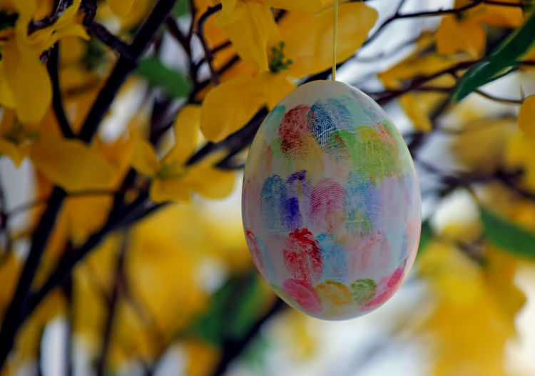 Hand made Easter egg Close-up Day Easter Egg Focus On Foreground Fragility Hand Made Multi Colored No People Religious Holiday Yellow