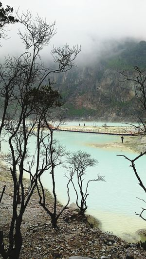 Postcode Postcards Kawah Putih Bandung White Crater Volcanic Landscape Nature Water Beauty In Nature Tree Landscape Outdoors Reflection Striking Crater Lake Sulfur Lake Acidic Lake Water beautiful Bluish Whitish Indonesia