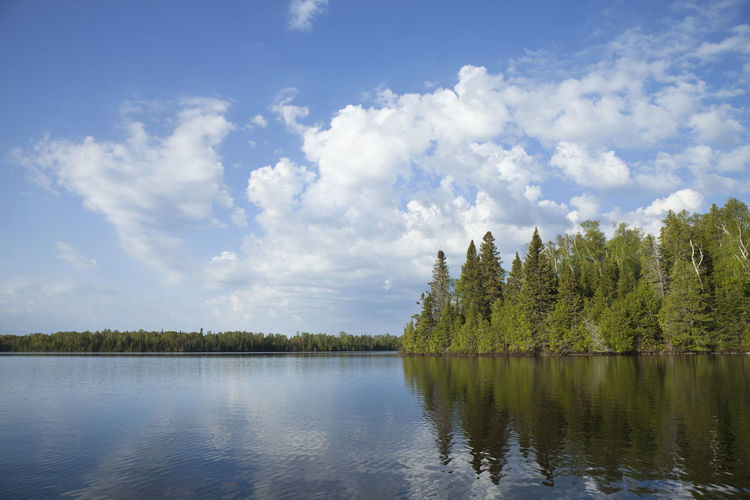 Northern Minnesota lake with pine trees along the shore and bright clouds on a calm morning Lake Northern Minnesota Trees Clouds Pine Morning Calm Beauty In Nature Landscape Scenic Nature Reflection USA Ripples Blue Green Birch Shoreline Water Wilderness Color Image Photography No People Tranquility Scenics - Nature