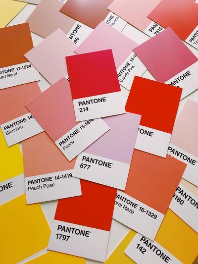 Paleta Colors