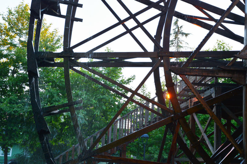 Alloy Architecture Bridge Bridge - Man Made Structure Built Structure Close-up Connection Day Forest Grid Low Angle View Metal Nature No People Outdoors Pattern Plant Railing Sky Steel Transportation Tree