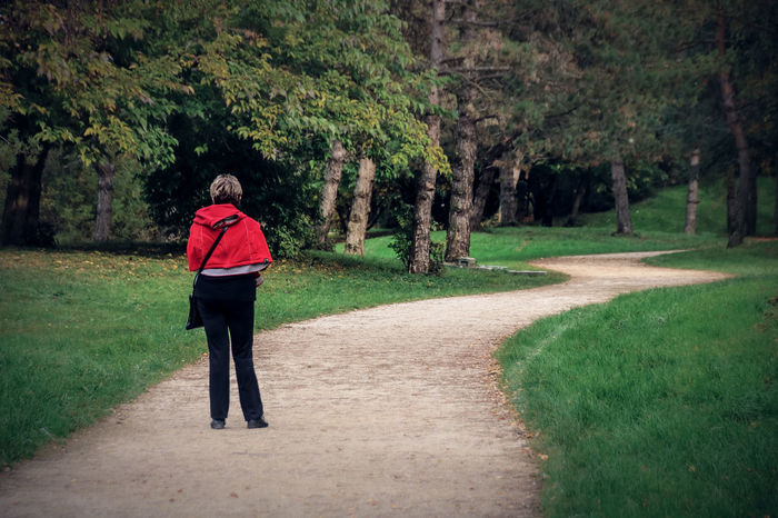 Alone Colors Little Red Riding Hood Nature Path Road Trees Woman Contrast Day Forest One Person Red Green The Way Forward Way