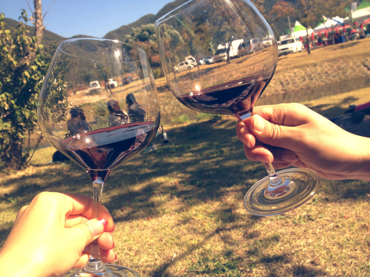 refreshment, drink, human hand, holding, glass, hand, alcohol, food and drink, human body part, wine, real people, wineglass, lifestyles, leisure activity, people, two people, focus on foreground, men, unrecognizable person, finger, red wine, drinking