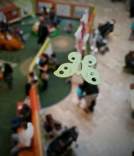 Depth Of Field Even flow, thoughts arrive like butterflies Oh, he don't know, so he chases them away Someday yet, he'll begin his life again. Butterfly At The Mall Dreams Even Flow