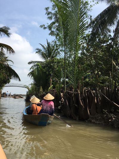 Paddling in river canal Water Palm Tree Real People Tree Men Leisure Activity Day Outdoors Togetherness Transportation Trip Travel People Holiday Vacations Nature Tree Palm Tree Tropical Climate Plant Adult