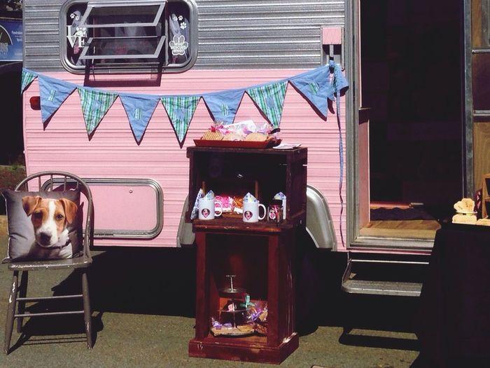 Camper Repurpose Business Vintage Dog