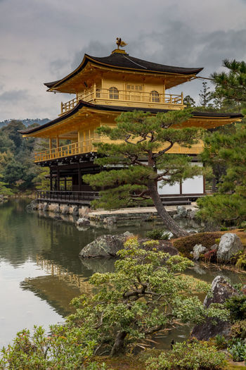 golden temple of kyoto Golden Temple Japan Architecture Belief Building Building Exterior Built Structure Cloud - Sky Day Kyoto Lake Nature No People Outdoors Place Of Worship Plant Religion Sky Spirituality Tree Water