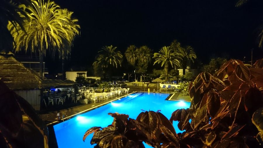 Pool at night. Puerto De La Cruz Tenerife Canary Islands Islas Canarias SPAIN España Pool Swimming Pool Night Night Lights Blue Water Night Photography VOID Darkness Mystery Water Tree Palm Tree Swimming Pool Luxury Hotel Luxury Tourist Resort
