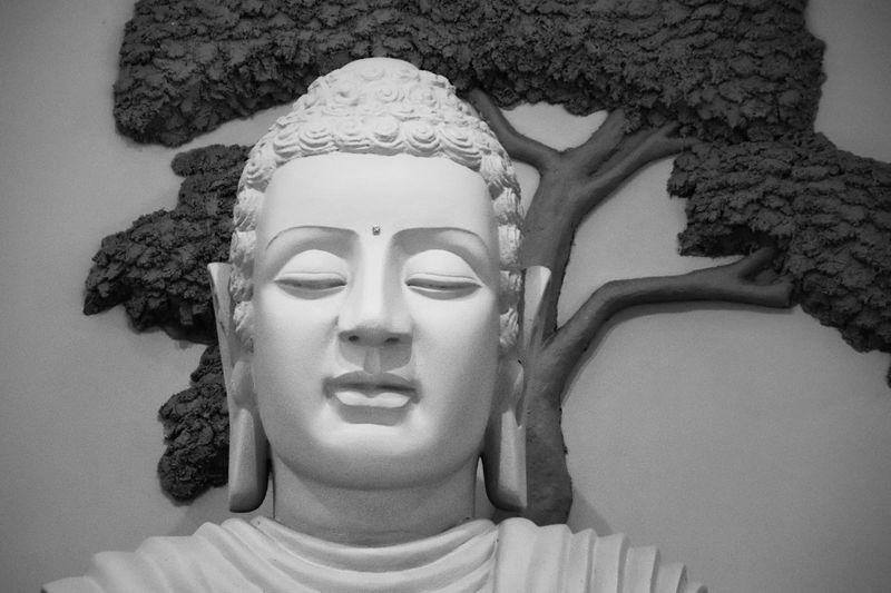 Buddha Statue Buddha Temple Portrait