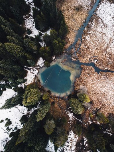 Little Crater Lake (Find me on IG @noeldxng) Water Nature High Angle View Day Outdoors No People Tranquility Beauty In Nature Drone  Oregon Landscape Adventure Perspectives On Nature Be. Ready. Scenics Road Trip Lake Forest Snow Winter Shades Of Winter