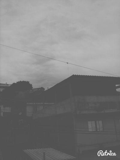 dias preto e branco