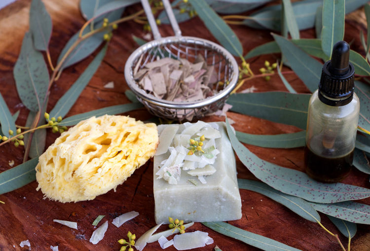 eucalyptus soap and oil with leaves on a eucalyptus tree disk Eukalyptus Bad Wellness Pur Wooden Table Cheese Close-up Dairy Product Day Eating Utensil Eukaliptus Tree Eukalyptus Eukalyptus Oil Eukalyptus Soap Focus On Foreground Freshness High Angle View Indoors  No People Selective Focus Sponge Still Life Summer Sports Table Tree Slice Wellbeing Wood - Material