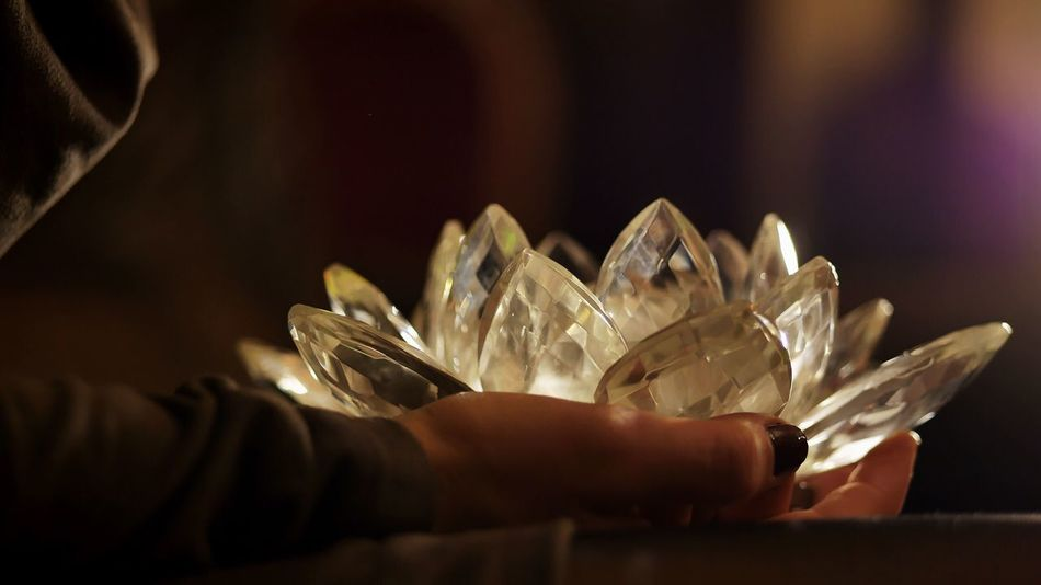 Human Hand One Person Indoors  Close-up Human Body Part Real People Freshness Day People Lotus Lotus Flower Glass Glass - Material Glass Art Art Religion Religious Kundalini