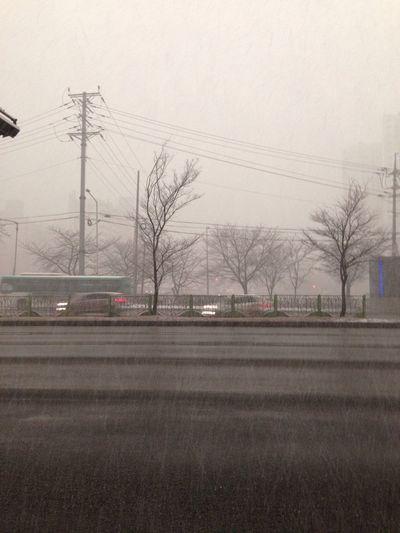 이건 좀 아니자나?ㅠ 길 무지 막히겠네... Snowing So Bad Not Beautiful