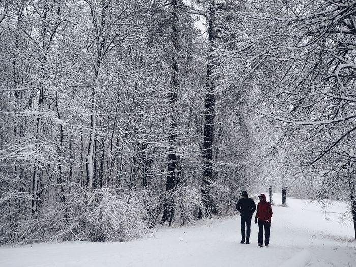 walking through the snow covered park of Nymphenburg castle. Munich Nymphenburg Winter Winterwalk Winter Wonderland Snow Muenchen Vacations People Beauty In Nature